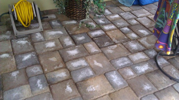 Efflorescence On Pavers Paver Sealing And Repair Seal