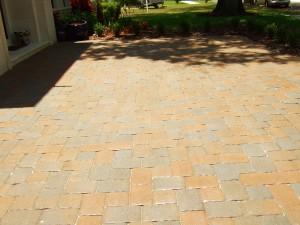 Tampa paver driveway after sealing