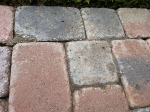 Polymeric sand that is dirty and degraded